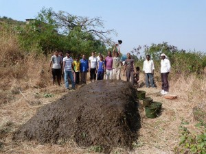 Picture of making compost for our kitchen garden