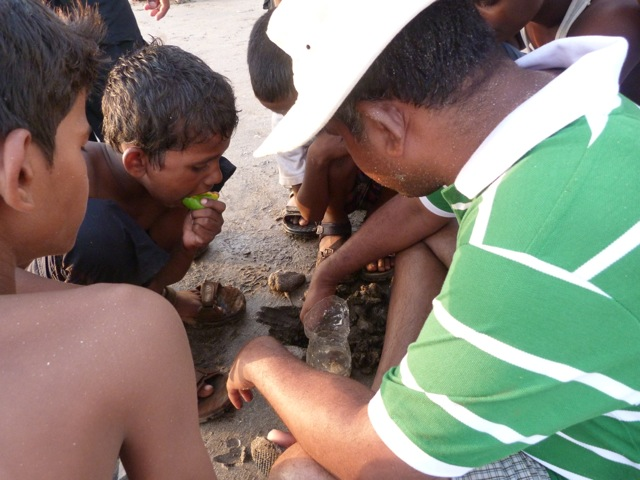Picture of children playing with a starfish